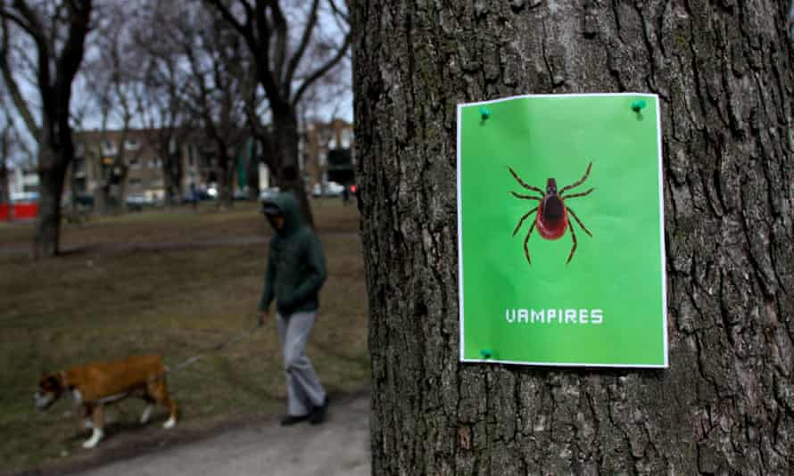 A Lyme Disease awareness poster in the Plateau of Montreal, Que.<br>E02890 A Lyme Disease awareness poster in the Plateau of Montreal, Que.