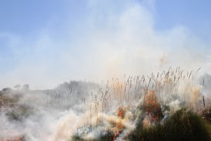 Smoke rises from a fire management burn in the Katiti Petermann Indigenous protected area