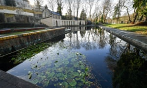Aquatic plants grow in the water at Cleveland Pools, ahead of its planned restoration after the Grade II-listed pools, secured £4.7m of National Lottery funding to enable the restoration to begin.