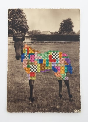 Horse with embroidered body