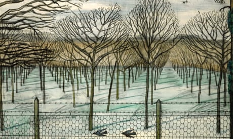 Top 10 books about trees