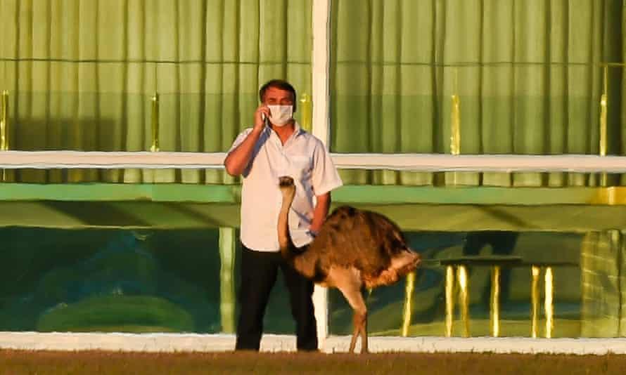 Jair Bolsonaro next to a rhea on the grounds of his official residence, Alvorada Palace, in Brasília.