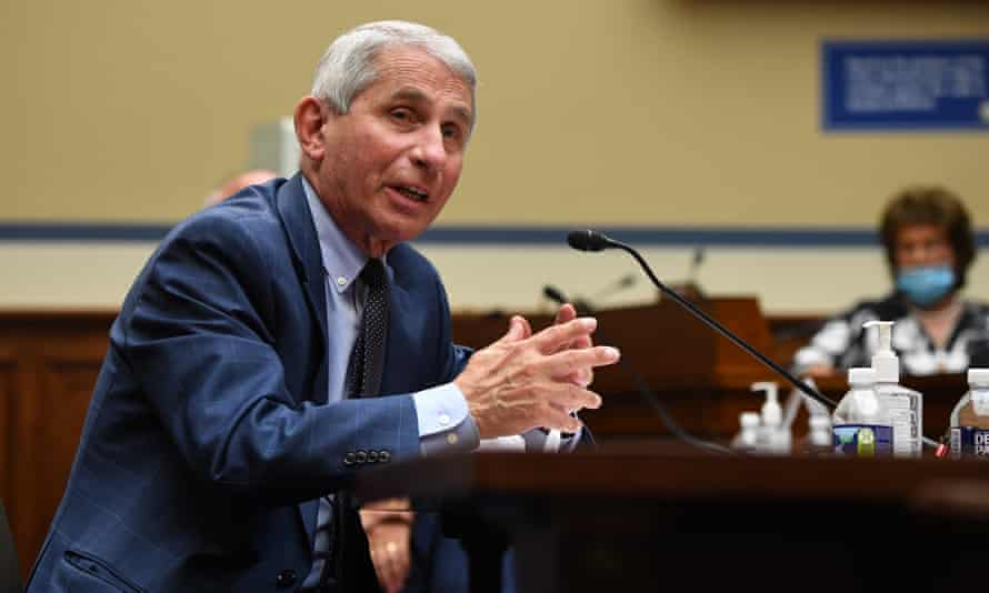 Dr Anthony Fauci testifies before a House subcommittee in Washington DC, on 31 July.
