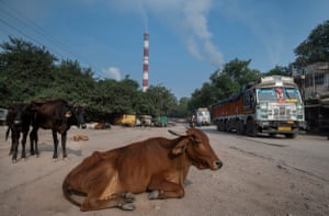Trucks carrying coal dust from coal washing leave the Hasdeo Thermal power station.