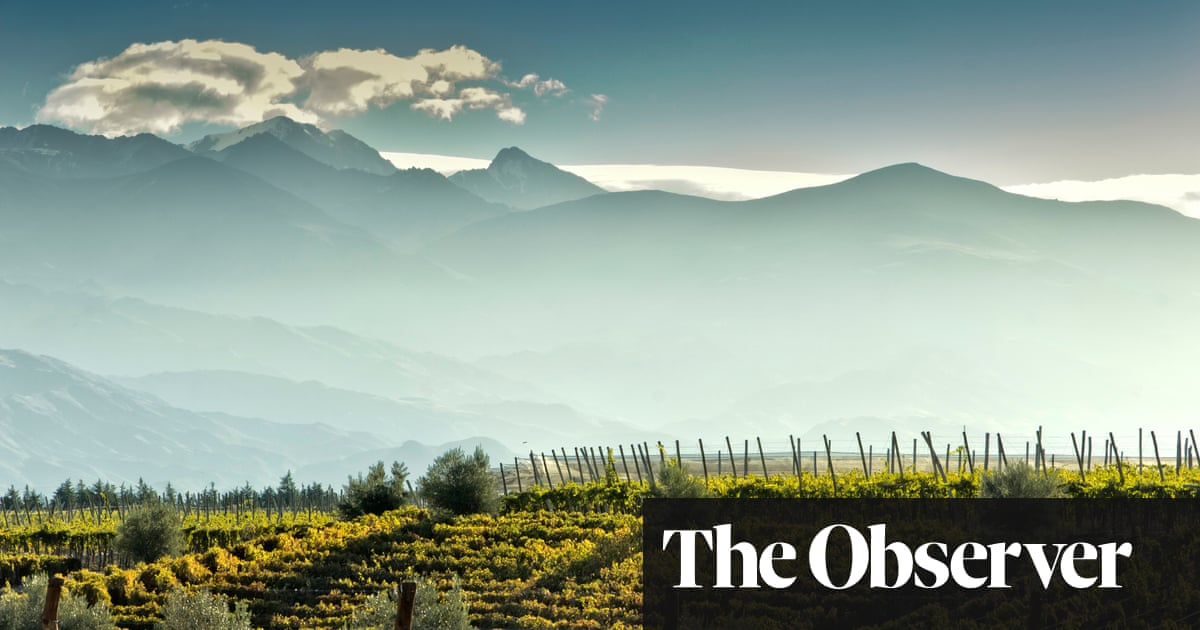 Chilean and Argentinian wines with a sense of place