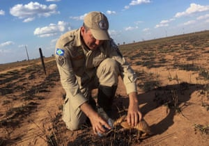 A picture released by the Mato Grosso firefighters department in Brazil shows Sergeant Pedro Ribas Alves giving water to an armadillo during the inspection of an area recently burned by fire near the city of Nova Mutum. The number of forest fires in Brazil surged in the first eight months of 2019, official data show, as the president, Jair Bolsonaro, faces growing criticism over rampant destruction of the Amazon