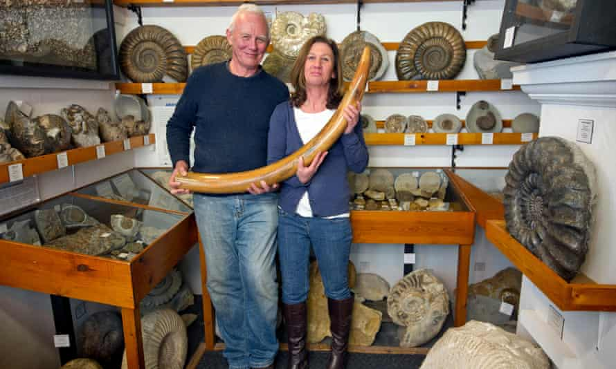 Dinosaurland Fossil Museum in Lyme Regis