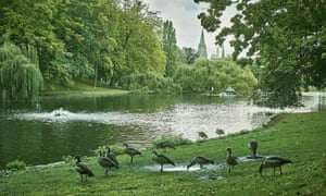 Park life: the feathery denizens of Ixelles ponds.