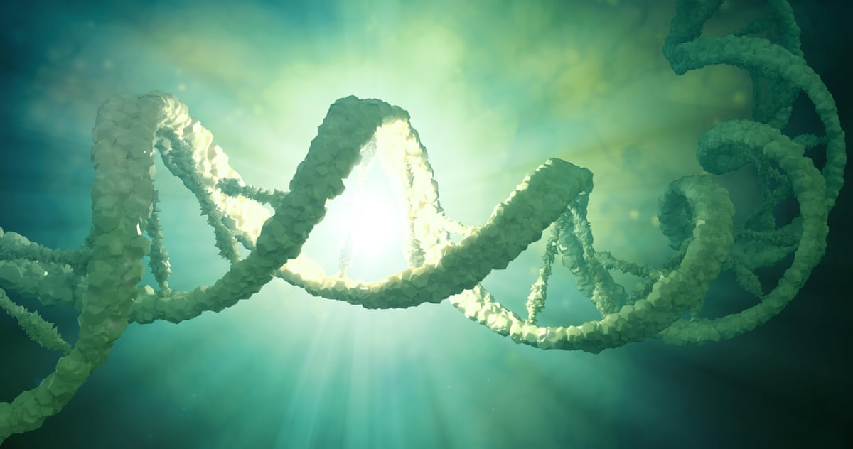 Scientists launch proposal to create synthetic human genome | Science | The Guardian