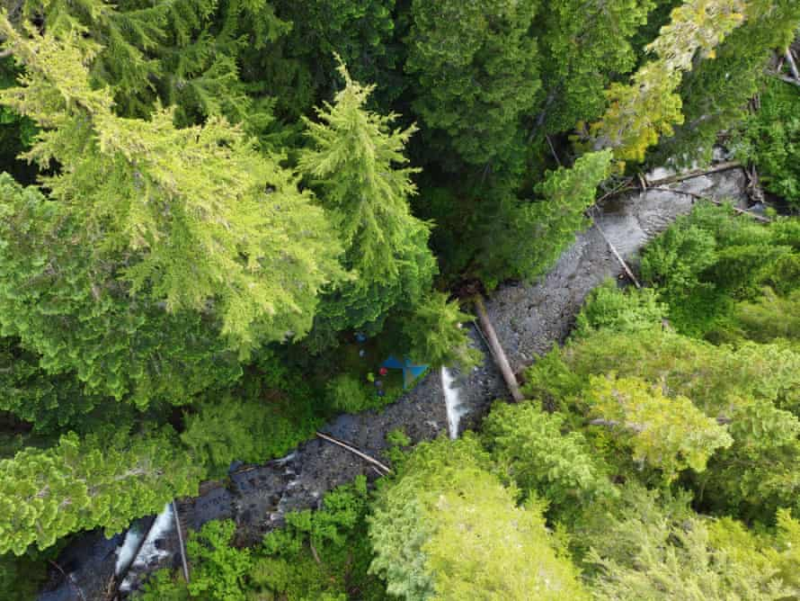 Backpackers camp on the edge of 26 Mile Creek, in the Skagit River headwaters.