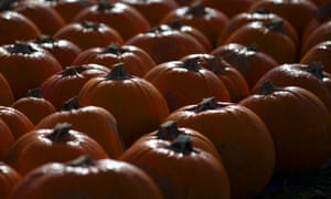 More than 10m pumpkins are grown in Britain each year.