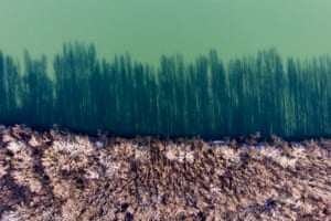 A picture taken with a drone shows coastal trees casting shadows on the River Tisza at Tiszakeszi, Hungary. In the night of 30 January 2000, a dam at the gold mining company Aurul, holding contaminated waters, burst and spilled 100,000 cubic metres of cyanide-contaminated water. The polluted waters spilled into the River Somes and reached the Tisza and then the Danube, killing large numbers of fish in Hungary, Serbia and Romania. The spill has been called the worst environmental disaster in Europe since Chernobyl disaster. The Hungarian government on 16 July 2000 declared 1 February as the memorial day for Tisza wildlife.