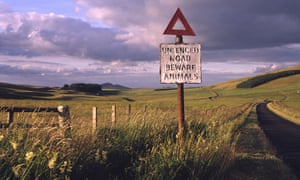 A roadsign warns of stray farm animals in the remote Scottish Border hills