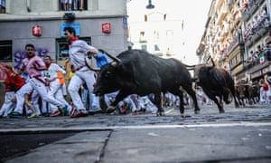 Bulls charging through the streets of Pamplona during the San Fermín festival in July.