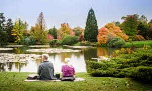 Rear of an elderly couple sitting on the grass enjoying the view of Sheffield Park lake and gardens in Autumn, East Sussex