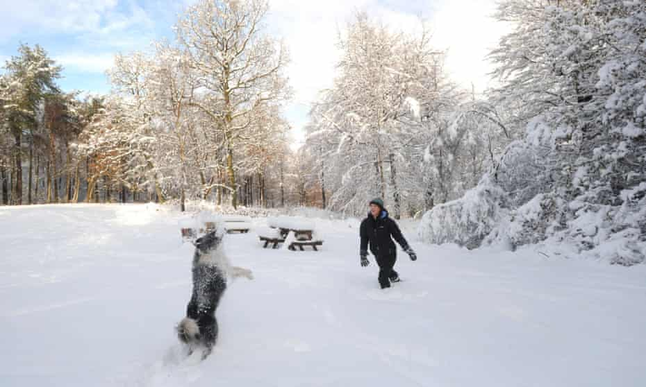 woman and dog in snow, Dalby Forest, North Yorkshire