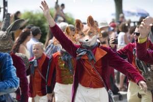 A fox on parade