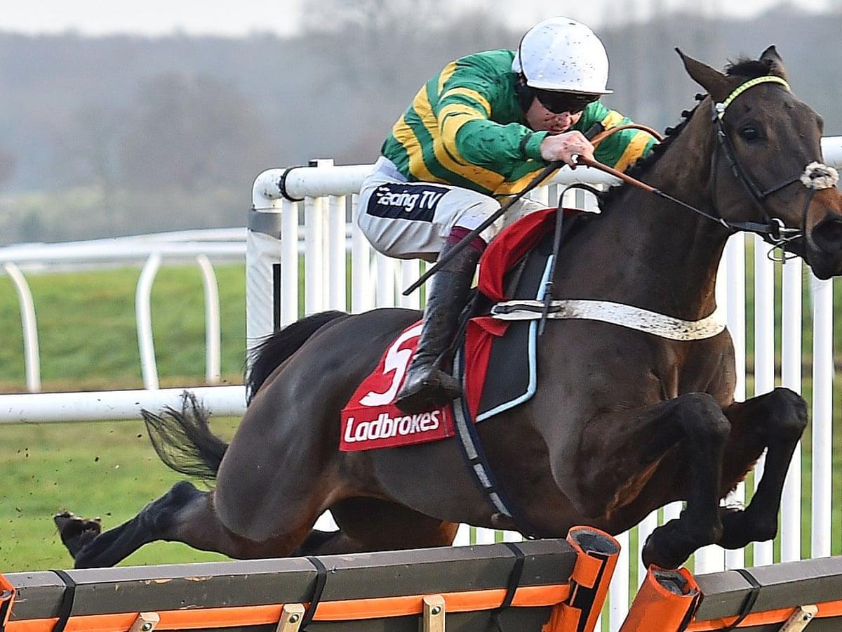 ladbrokes champion hurdle betting