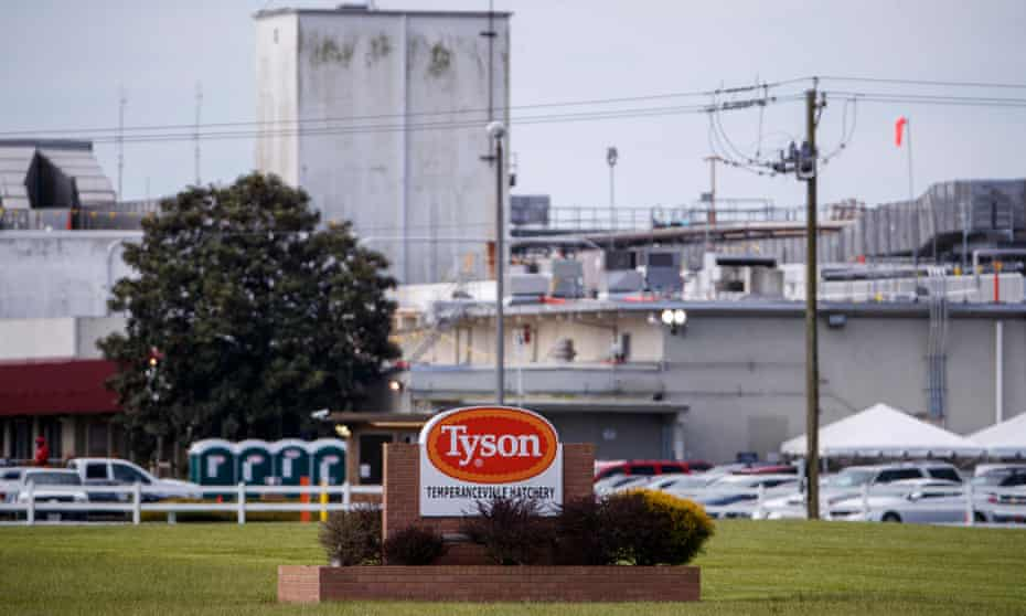 The Tyson Temperanceville Complex, which processes some 200,000-205,000 birds a day, in Virginia. The company is measuring workers temperatures as they report for work.