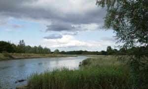 River Deben near Wilford Bridge.