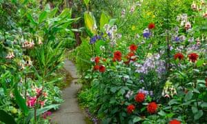 A winding path through the border, with fuchsia 'Crackerjack', canna 'Musifolia' and dahlia 'Murdoch'.