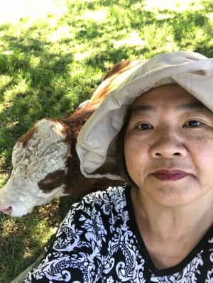 A woman with a cow