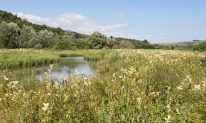 West Sussex wetlands near Arundel, a Wildfowl and Wetlands Trust reserve.