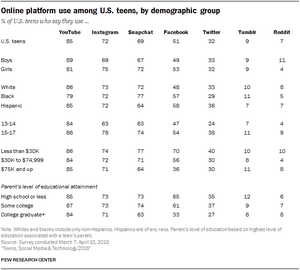 A breakdown of use by demographic group.
