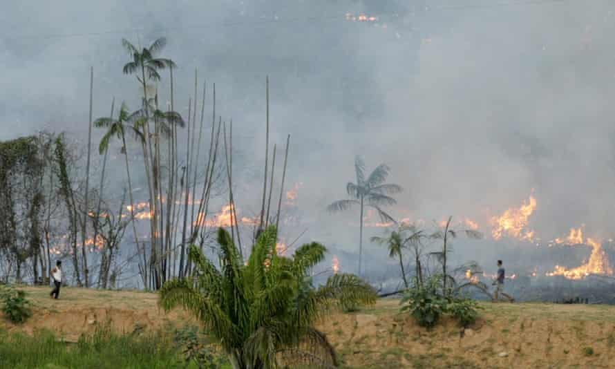 Brazilian jungle being turned into farmland by the typical slash-and-burn method.