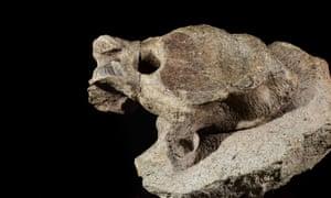 A fossil of a single vertebra from Alan the sauropod.