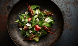 Wild greens salad with pan-fried crickets and grasshoppers.