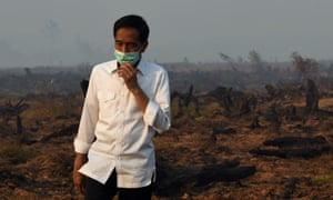 Indonesia's president Joko Widodo inspects a peatland clearing that was engulfed by fire during a visit to Southern Kalimantan province on Borneo island in September.