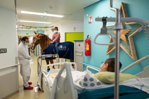 Isaac, 9, shows off his friendship with Peyo to his mother at Calais Hospital