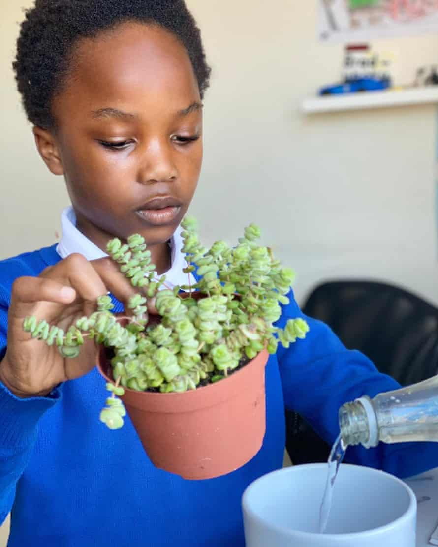 Ebuka watering a plant.