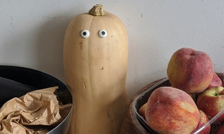 Shelf of squash with googly eyes stuck to them
