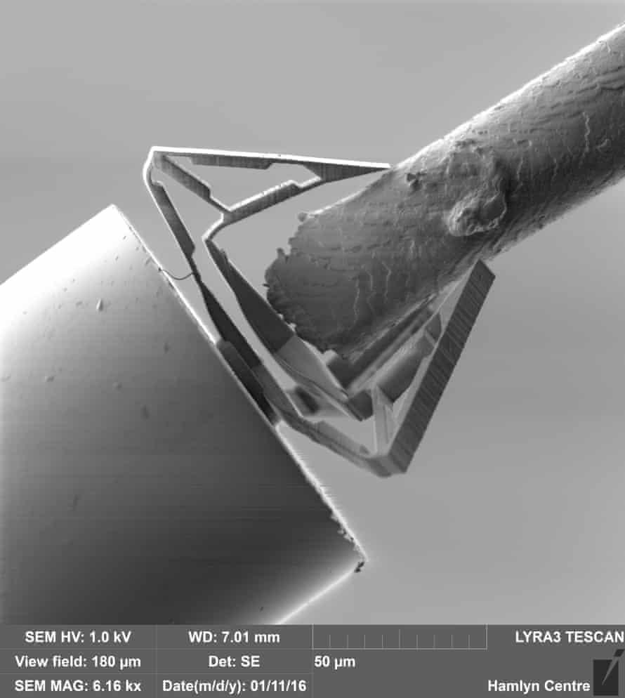 the nanoscale surgical tool