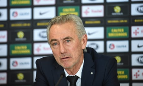 Van Marwijk's Socceroos appointment shows lack of long-term direction