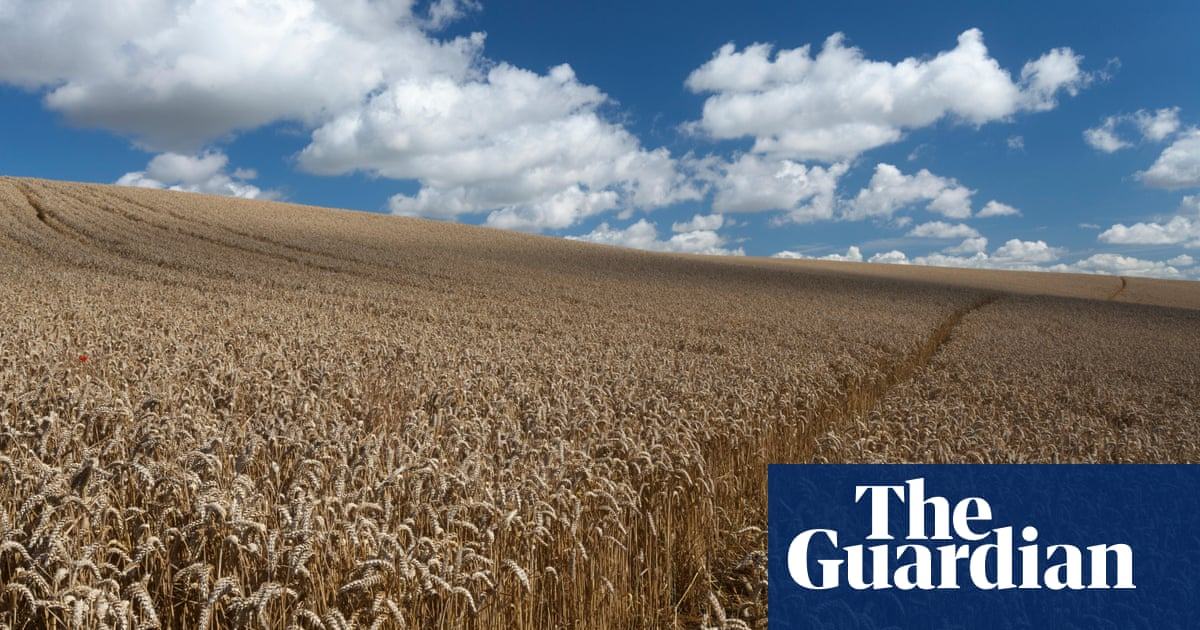 Poem of the week: Song at the Beginning of Autumn by Elizabeth