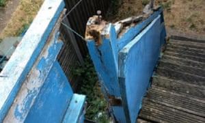 A picture taken last year of a broken wooden stair rail in a Bernard McGowan property.