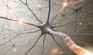 Artist's impression of a neuron.