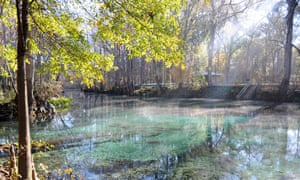 Cool pool … mist rising in the morning off Ginnie Springs, Florida.