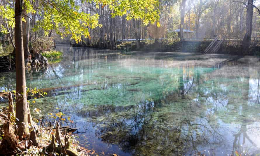 Mist rising in the morning off Ginnie Spring.