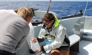 Crew aboard Mega Expedition volunteer vessel ExtremeH20 check the contents of the 'codends' after trawling the Great Pacific Garbage Patch