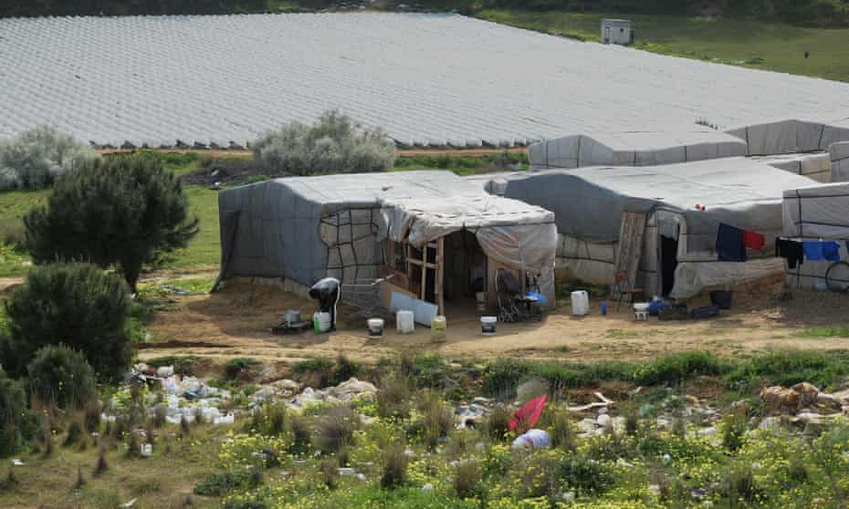 One of the makeshift settlements housing migrant day labourers near Lepe, Huelva, southern Spain.
