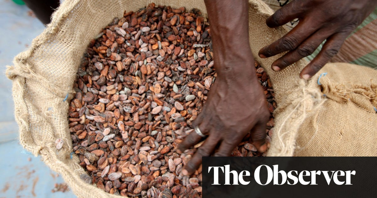 Notes on chocolate: fascinating flavours are all about the beans