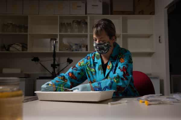 Rowley at work in her lab
