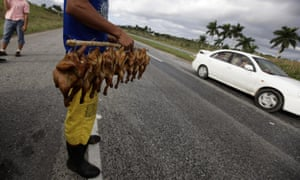 A man sells roast chickens along a highway near Artemisa, some 80km (50 miles) west of Havana.