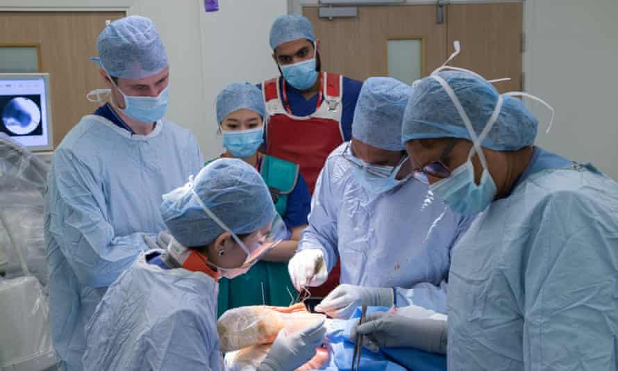 Surgeon and medical staff working in an operating theatre