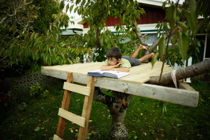 Boy reading book in treehouse.