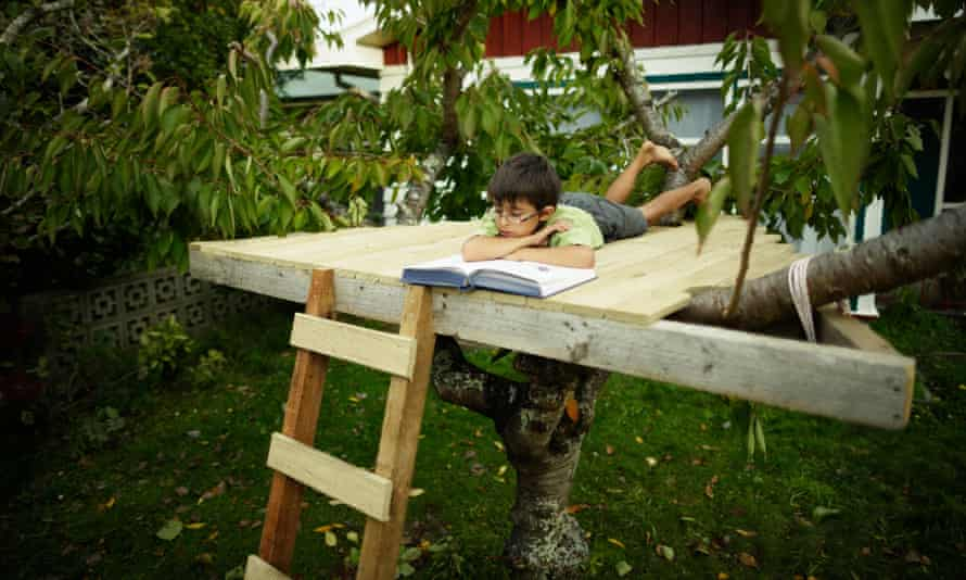 Boy reading book in treehouse